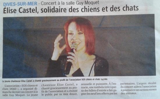 pays-d-auge-aqpres-concert.jpg